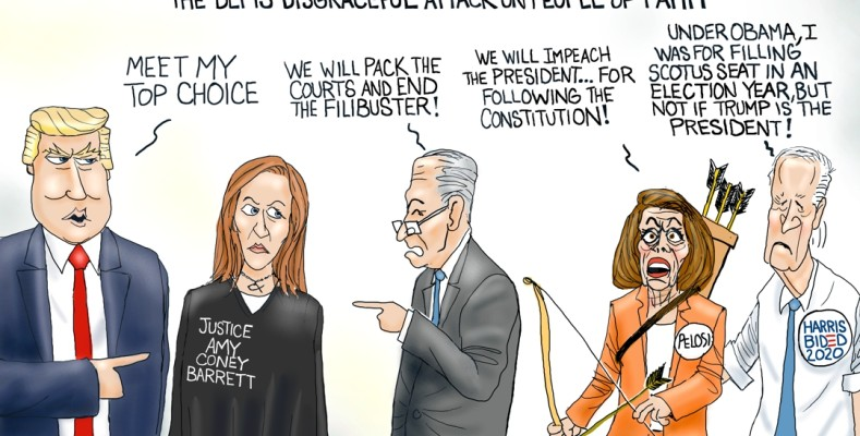 Cartoon: MAGA Choice