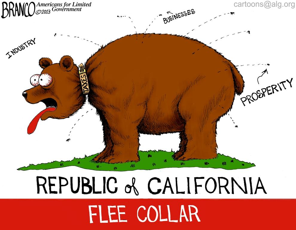 CA Flee Collar 990 NRD