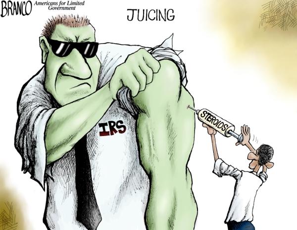 IRSjuiciing