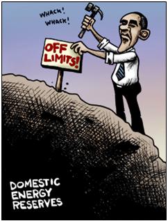domestic energy reserves