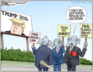 establishment puzzled by trump